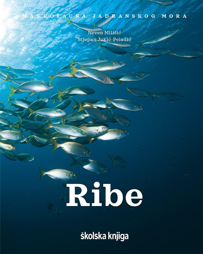 """Ribe – I. knjiga serijala """"Makrofauna Jadranskog mora"""""""