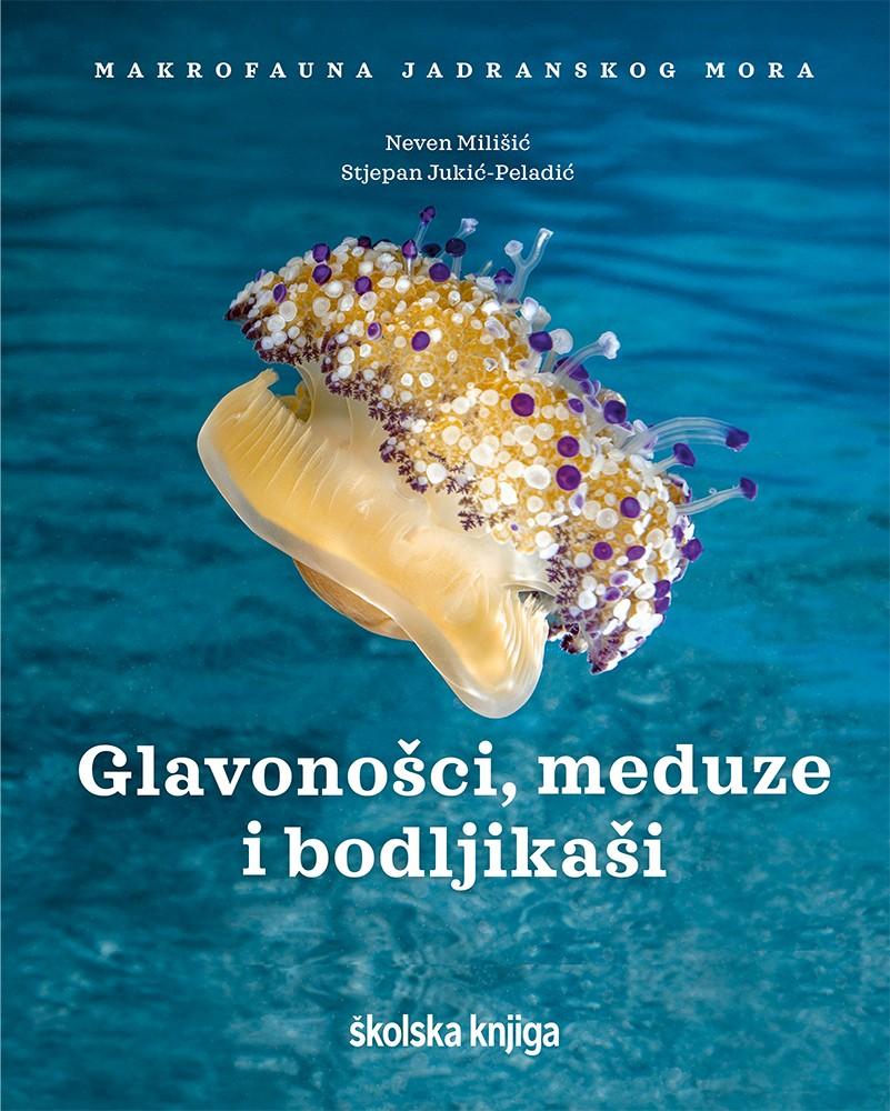 """Glavonošci, meduze i bodljikaši – II. knjiga serijala """"Makrofauna Jadranskog mora"""""""