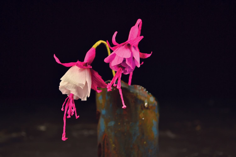 Rože od papira