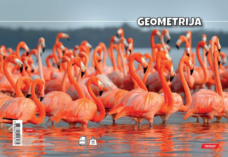 Geometrija Target Flamingo